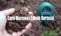 Cara Merawat Tanah Berasid